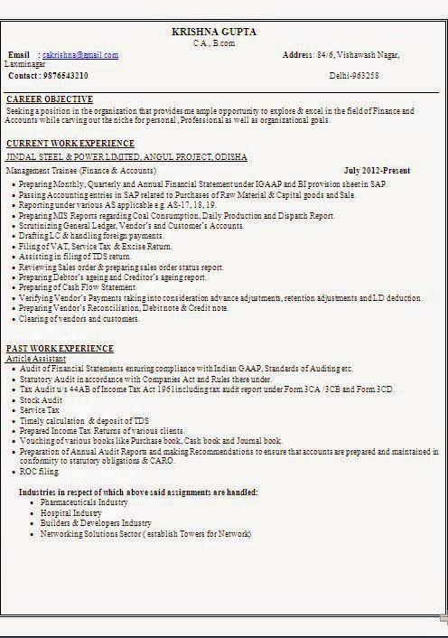 download resume doc Sample Template Example ofExcellent Curriculum - finance report format