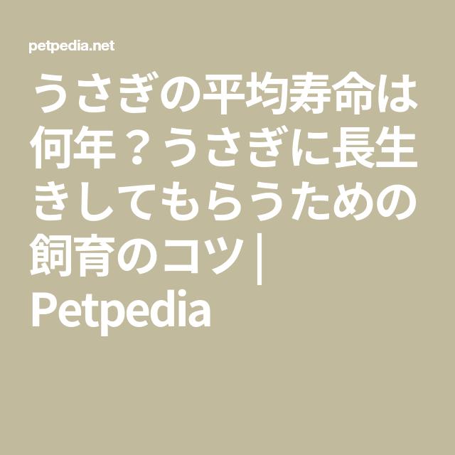 うさぎの平均寿命は何年 うさぎに長生きしてもらうための飼育のコツ Petpedia 長生き うさぎ して
