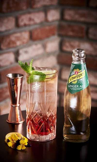 Ginger Ale Albatros Cocktail Rezepte In 2019 Ginger