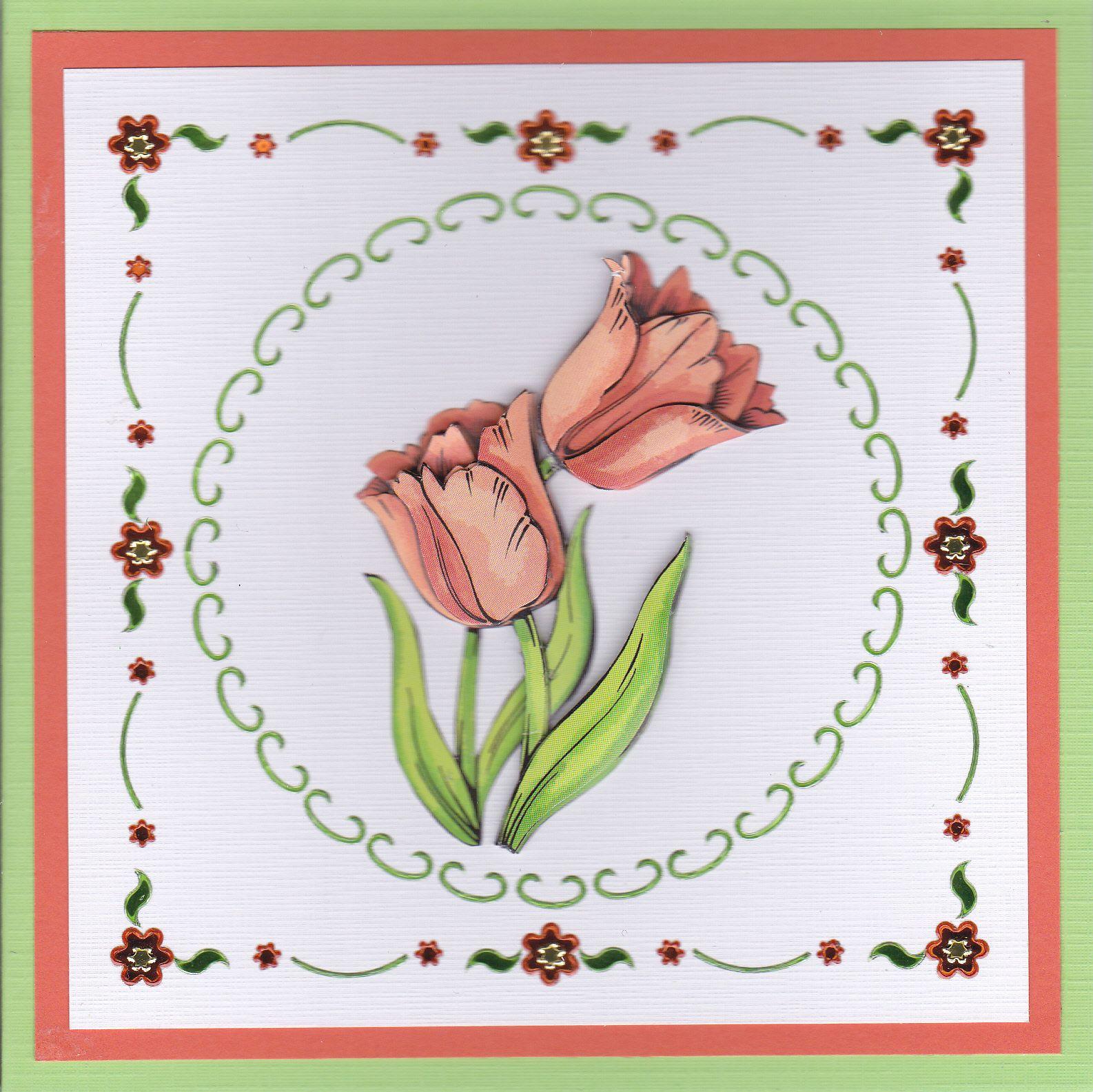 Y Tulpen