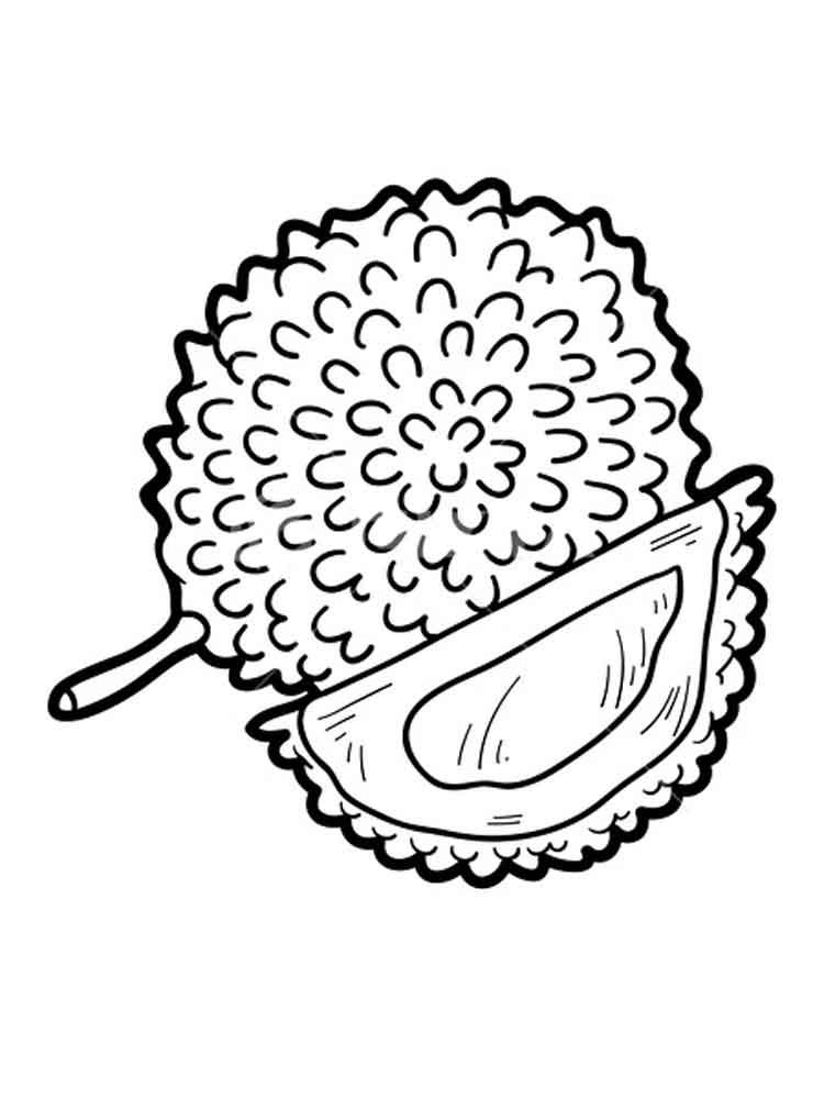 Coloring Picture Of Jackfruit Free Coloring Pages