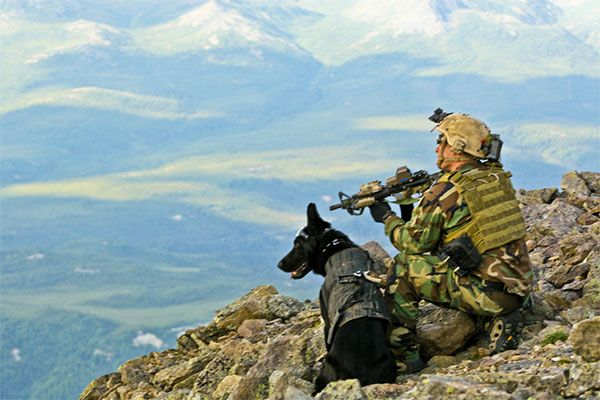 Our troops and their dogs selflessly protect us and our way of life. May God protect them and keep them safe.
