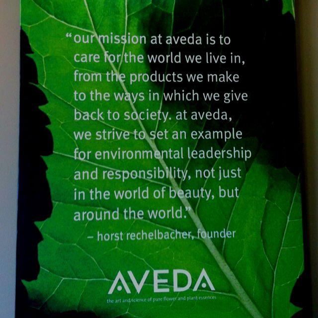 AvedaS Mission Statement  Salon Biz    Aveda Salons