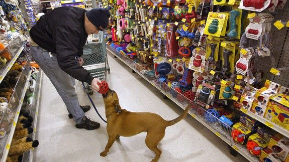 Petsmart Bought Chewy Com In What S Reported To Be The Biggest E Commerce Deal Ever Petsmart Pet Store The Big E