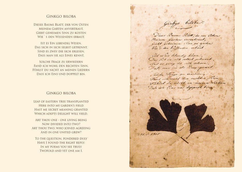 Ginkgo Biloba Goethe Poems Poetry Quotes
