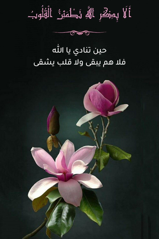 قرآن كريم آية أ ل ا ب ذ ك ر الل ه ت ط م ئ ن ال ق ل وب Plants Wallpaper Duaa Islam