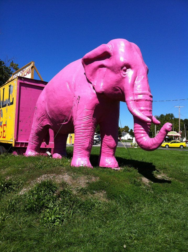 Pink Elephant Antique Mall Livingston Illinois Been There