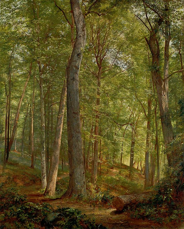 William Trost Richards 'June Woods, Germantown' 1864