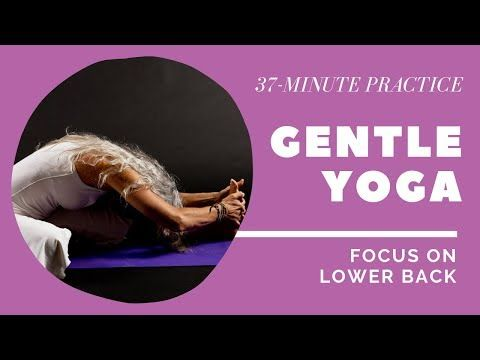 lower back relaxing yoga for seniors practice focus on