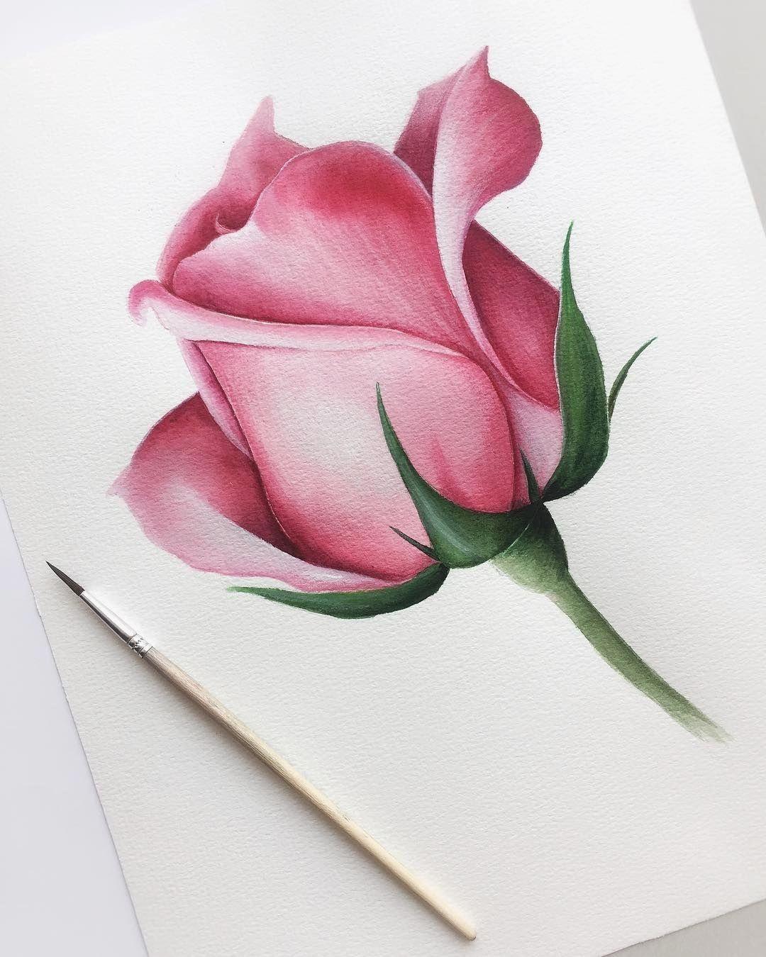(notitle) - #watercolorart