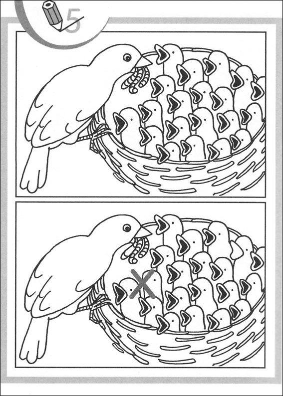 jeu des 7 erreurs à imprimer   Visuele ontwikkeling, Vogels, Lesideeën