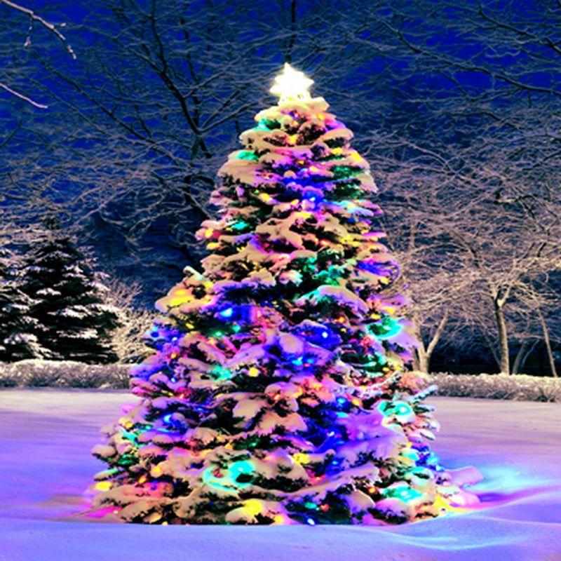 Click to Buy \u003c\u003c Color Lights Christmas Tree backdrop High-grade