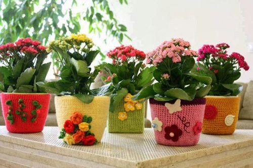 Pot Bunga Yang Cantik Dan Unik Pot Bunga Bunga Bunga Cantik