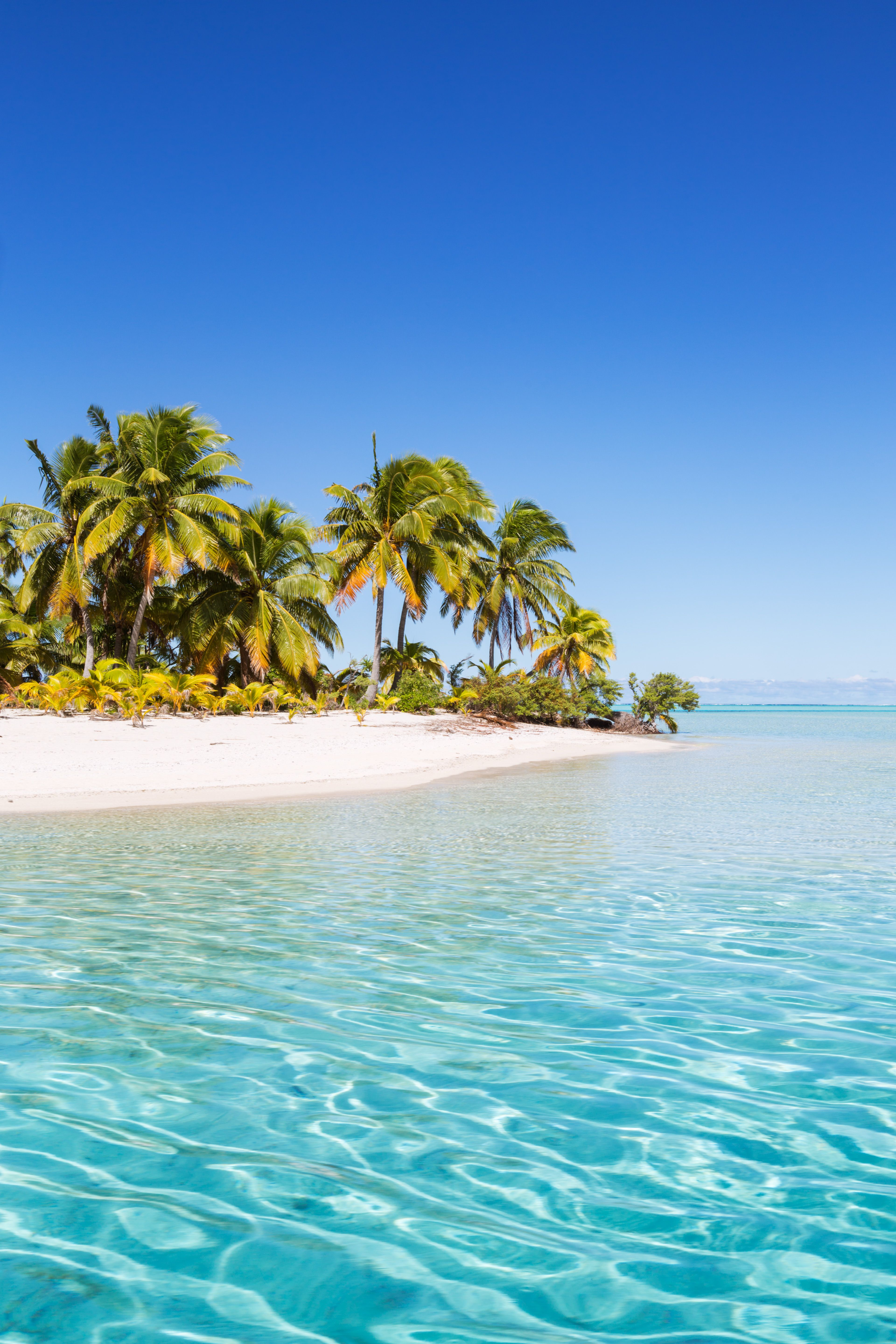 The Best Beaches In World