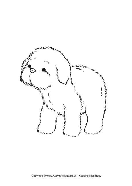 Sheepdog Puppy Colouring Page With Images Sheep Dog Puppy