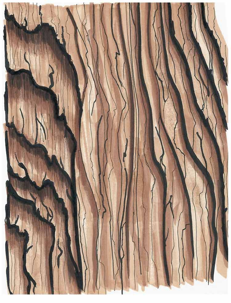 copic inspire techniques to master pinterest copic wood grain