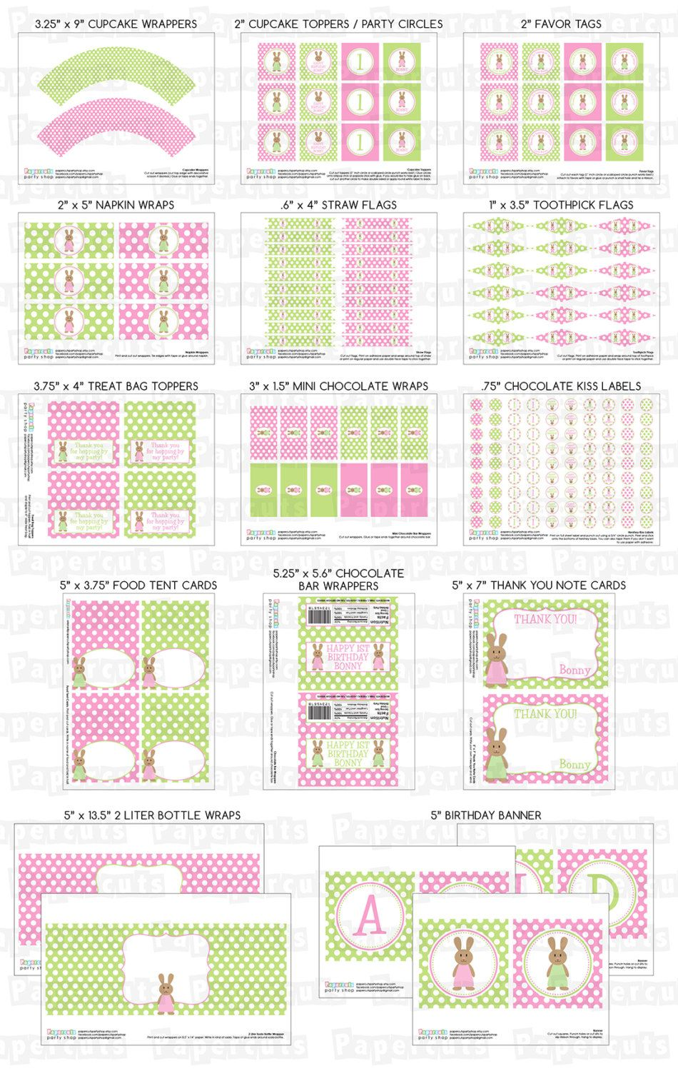 Bunny Rabbit Girl Theme Large Birthday Party Package Pink Green