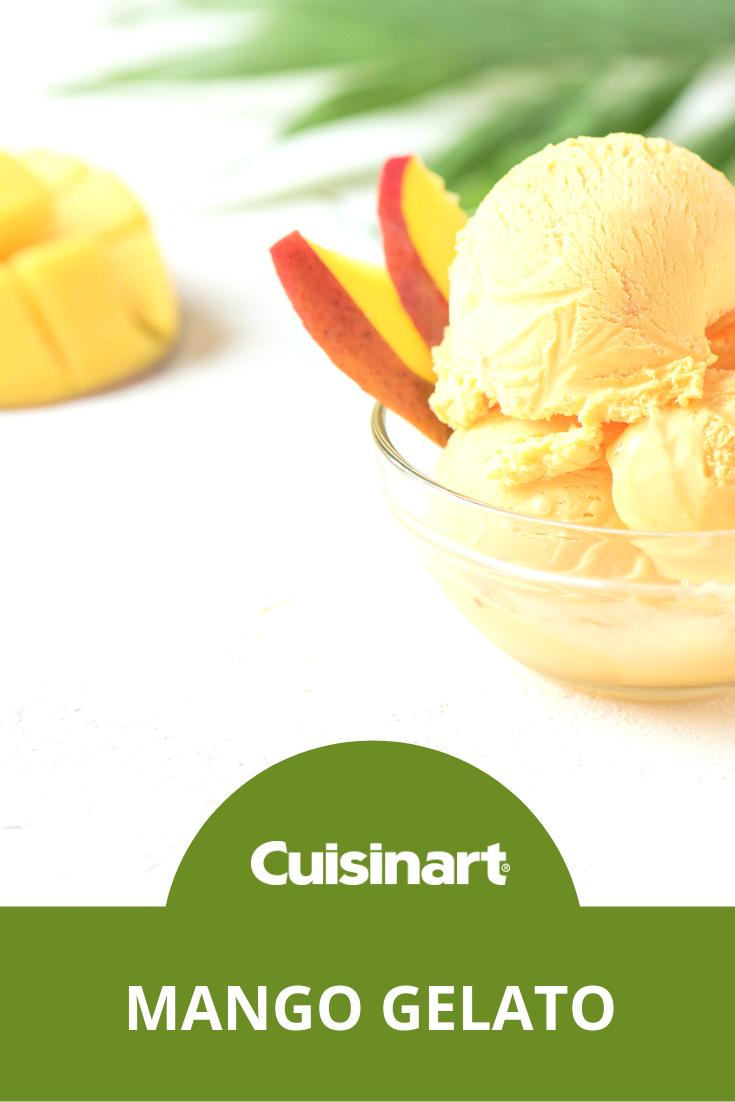 Pure Indulgence 2 Quart Frozen Yogurt Sorbet Ice Cream Maker Gelato Recipe Mango Gelato Recipes Frozen Dessert Recipe