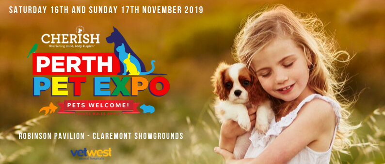 Cherish Perth Pet Expo 2019 November 16 17 Australian Dog Lover Pets Cat Inc Dogs Day Out