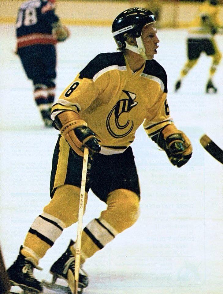 Robbie Ftorek Of The Cincinatti Stingers Hockey Helmets Hockey