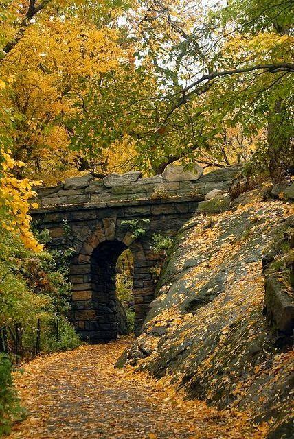 Autumn Arch, Central Park, NYC