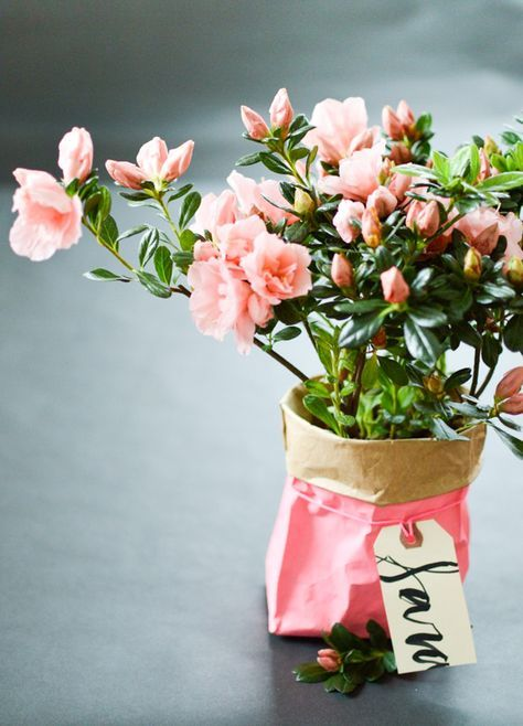 Three Ways Paper Bag Party Ideas Oh Happy Day Paper Flowers