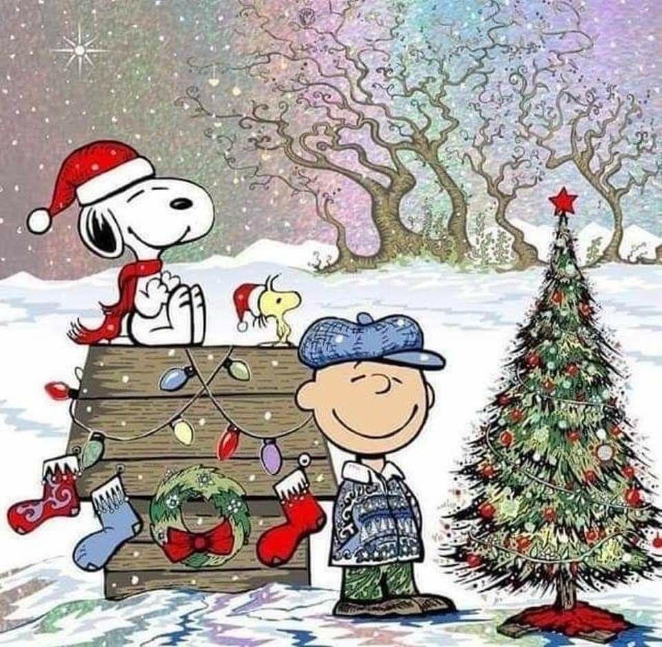 Pin by Jay Snable on Ho Ho Ho! Funny christmas cards diy