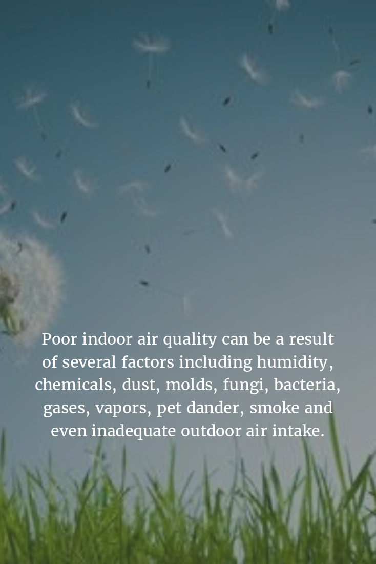 How clean is the air in your home? Air quality, Indoor