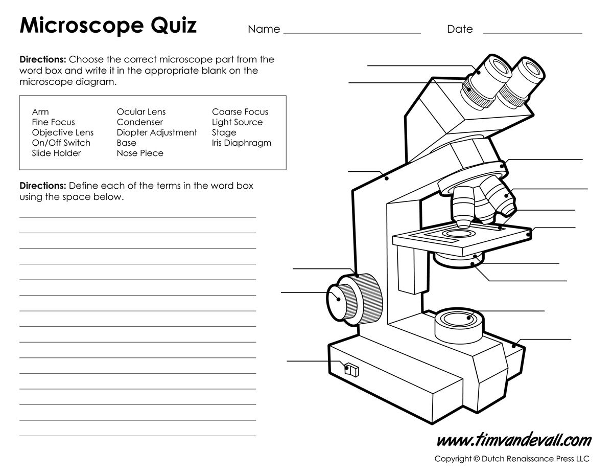 microscope diagram labeled unlabeled and blank parts of a basic skills for science. Black Bedroom Furniture Sets. Home Design Ideas