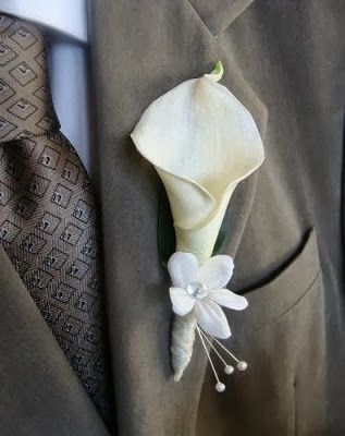 A little tiny calla can be a perfect flower for a elegant boutonniere.