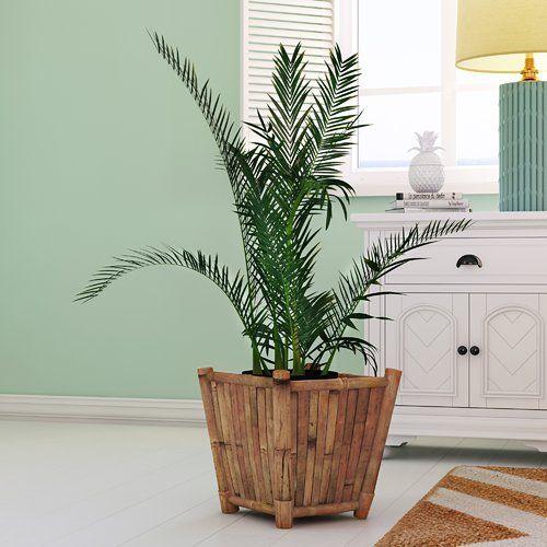 Found it at Wayfair - Porter 3 Piece Bamboo Pot Planter Set