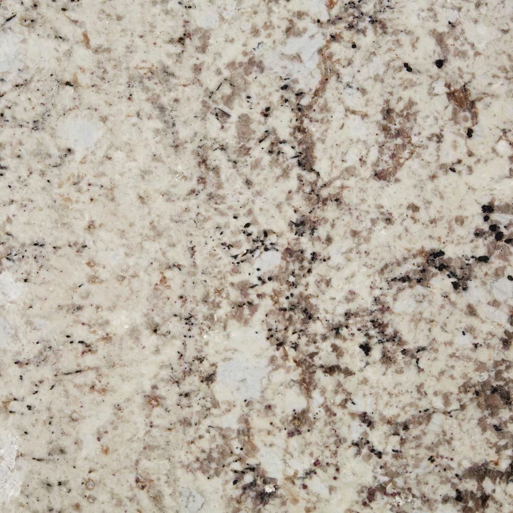 Stonemark 3 In X 3 In Granite Countertop Sample In Eagle White