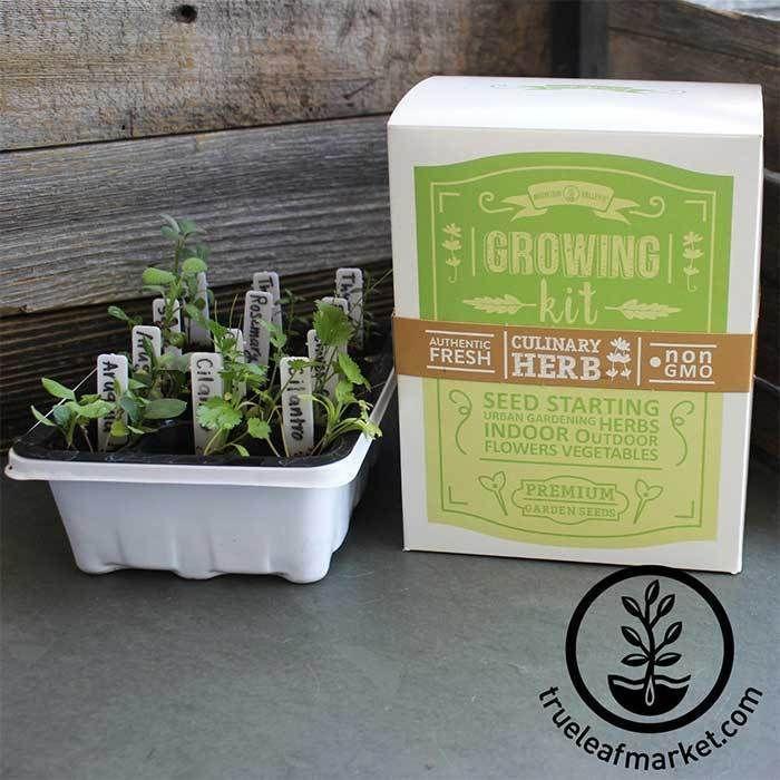 Indoor Culinary Herb Garden Starter Kit - Grow Non-GMO Herbs From Seed,  #Culinary #Garden #Grow #HERB #herbgardenfromseeds #Herbs #indoor #Kit #NonGMO #Seed #Starter