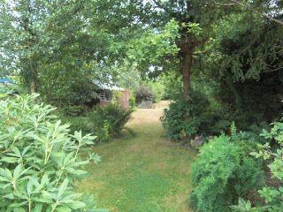 A Life Designing Garden Design Ideas Long Narrow Garden