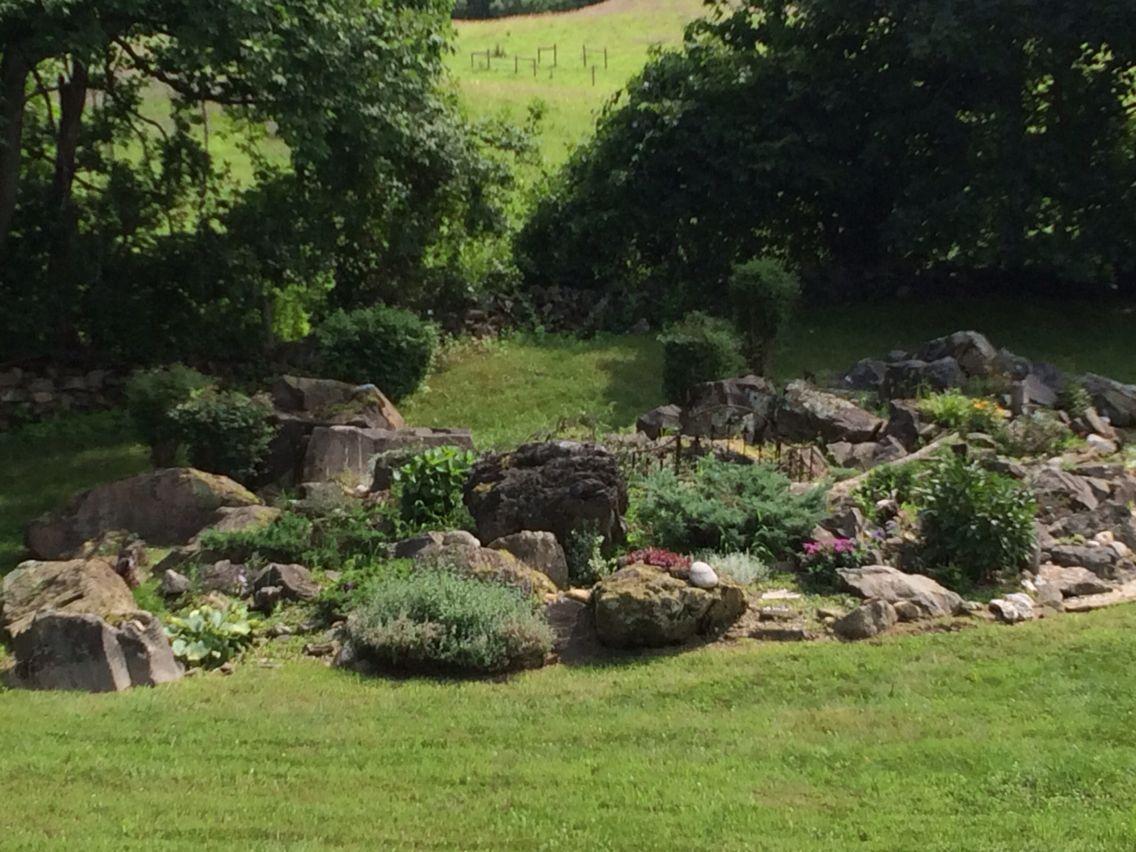 Rock garden afternoon Lush