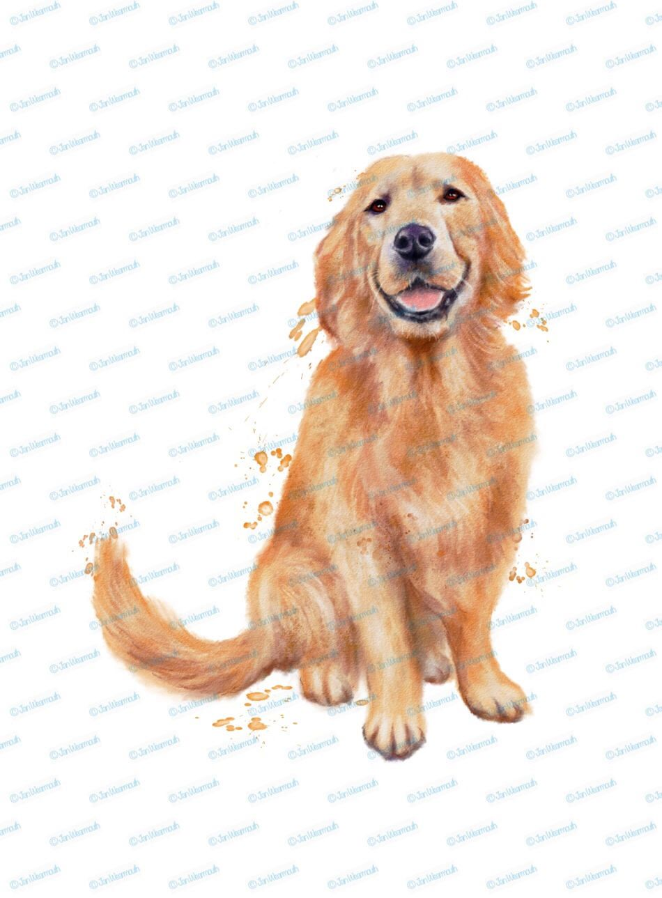 Dog Clipart Retriever Clipart Instant Download Digital Watercolor