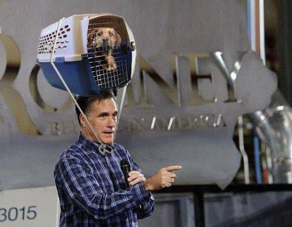 This is funny, just the other day I seen a corvette with a pet cage bungee strapped to it at the store.  I asked Gerrit if he thought Mitt Romney was here!  ahahahaha