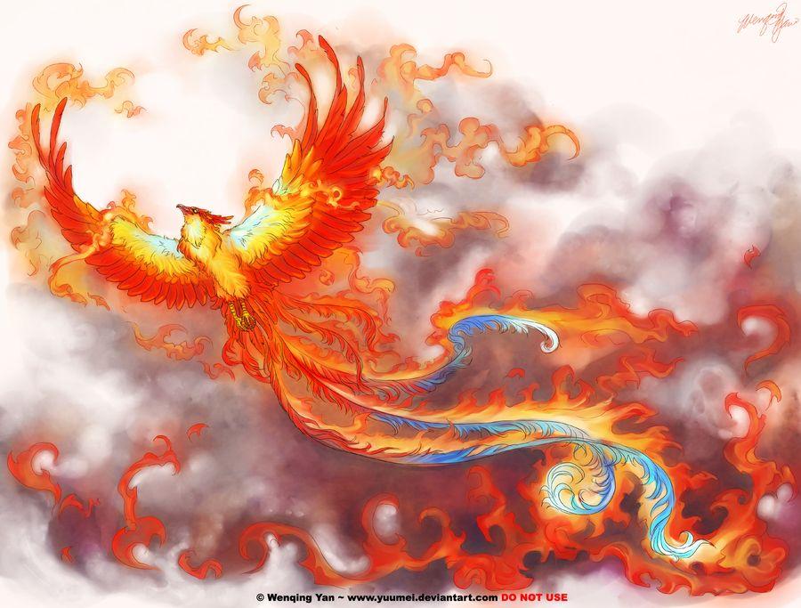 Phoenix tat love this phoenix tattoo phoenix artwork