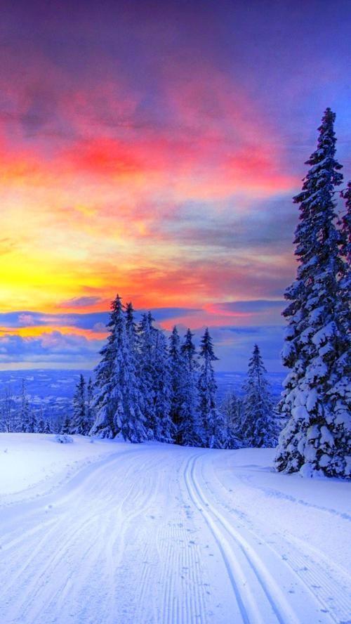 Winter Wallpaper Iphone Winter Wallpaper Winter Scenery Winter Landscape
