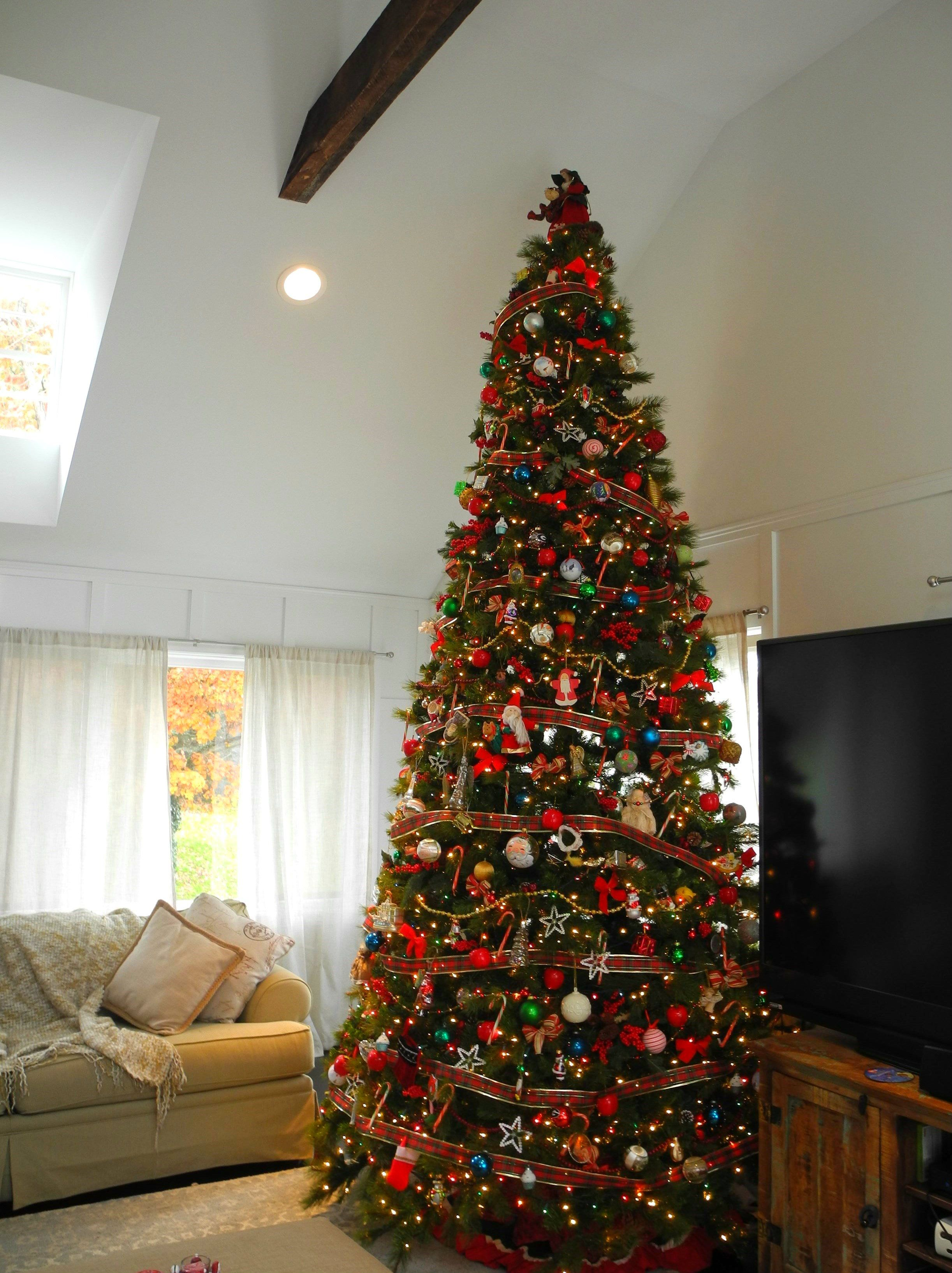 traditional tree, traditional Christmas, old fashioned, 12 ft tree ...