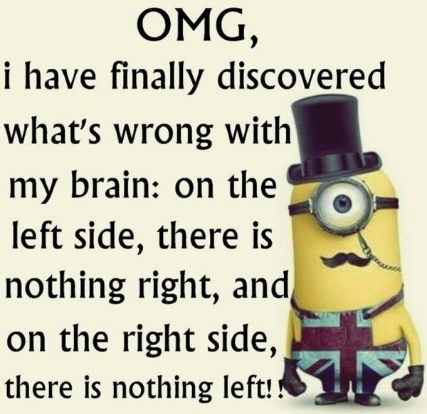 Best Funny Minion Pictures With Quotes U2013 10 Pics