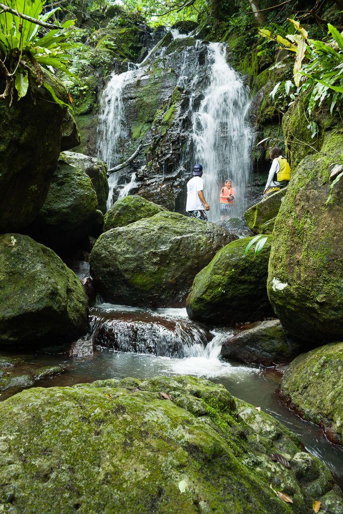 Waterfall in de rainforest, Ishigaki Island, Ishigaki-shi, Okinawa Prefecture_ Japan