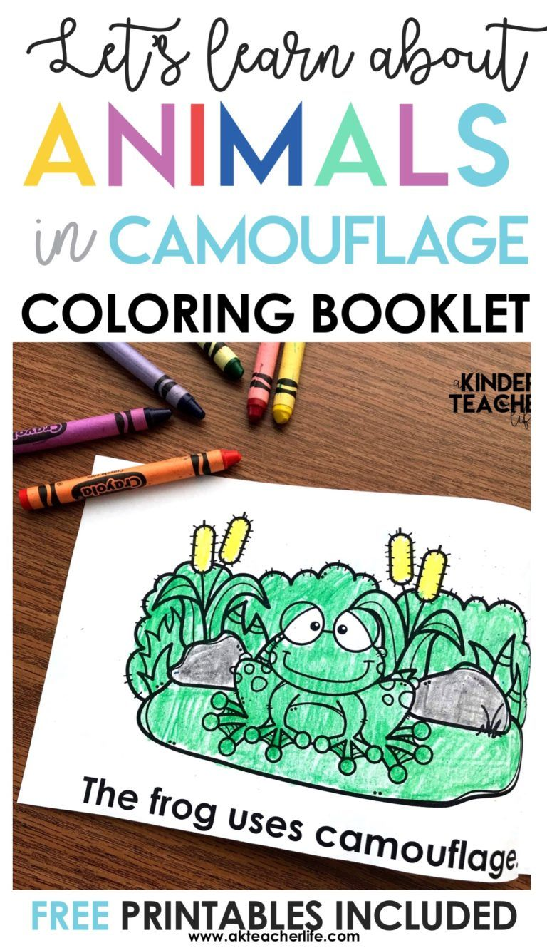 Free Camouflage Coloring Pages