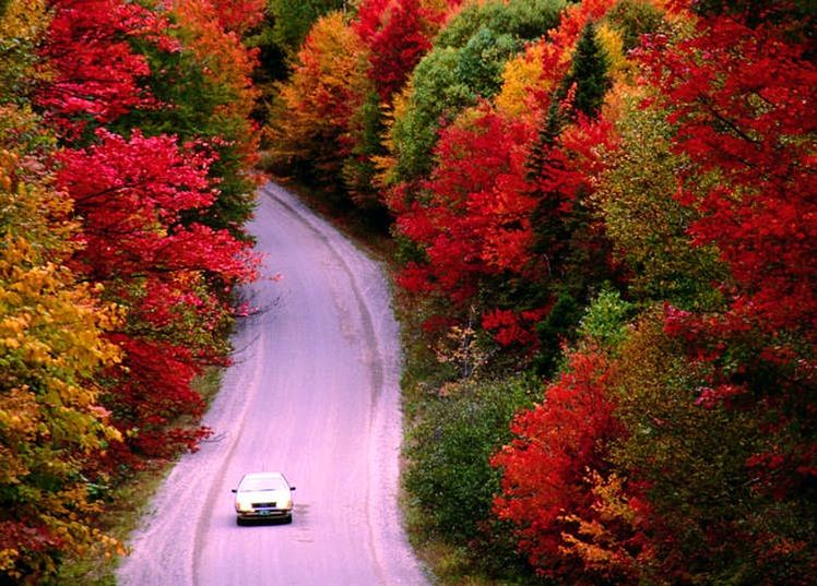 Read Fall foliage tour: the ultimate New England road trip