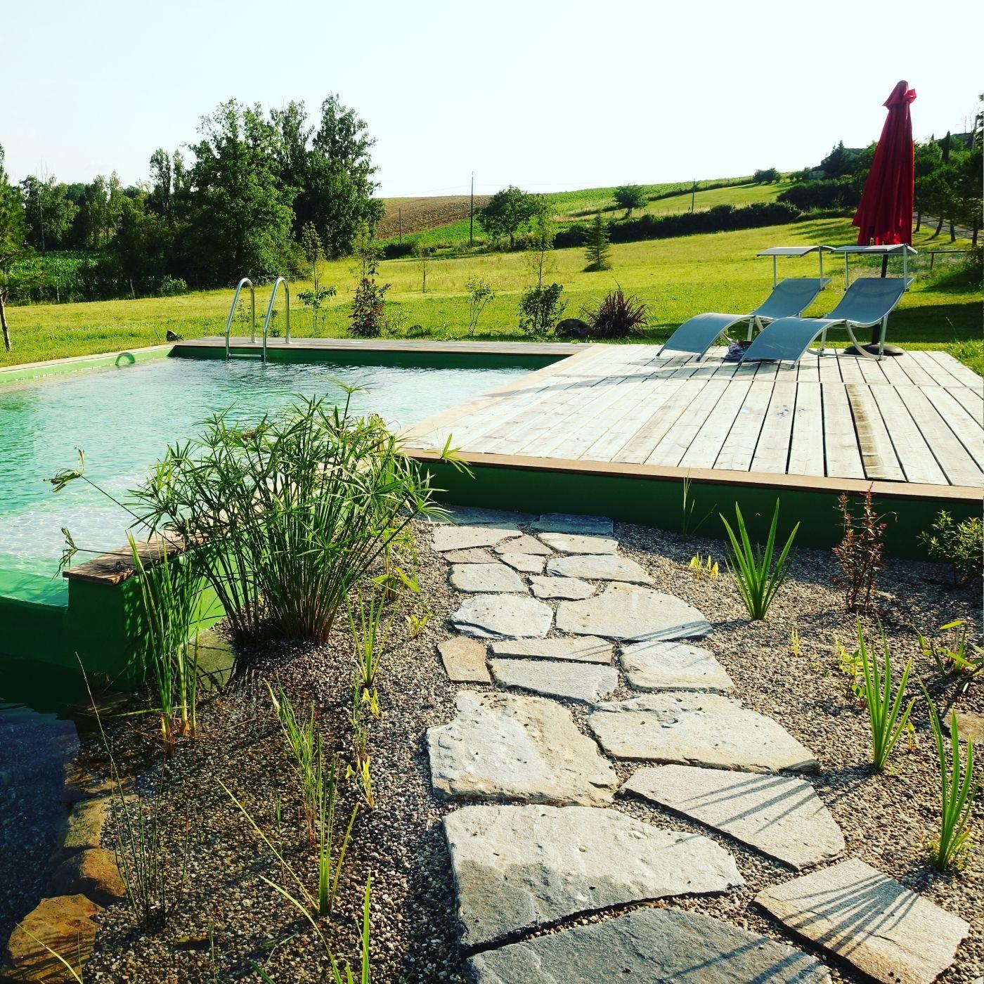 Prairie fleurie devant la piscine naturelle  Brin de Cocagne