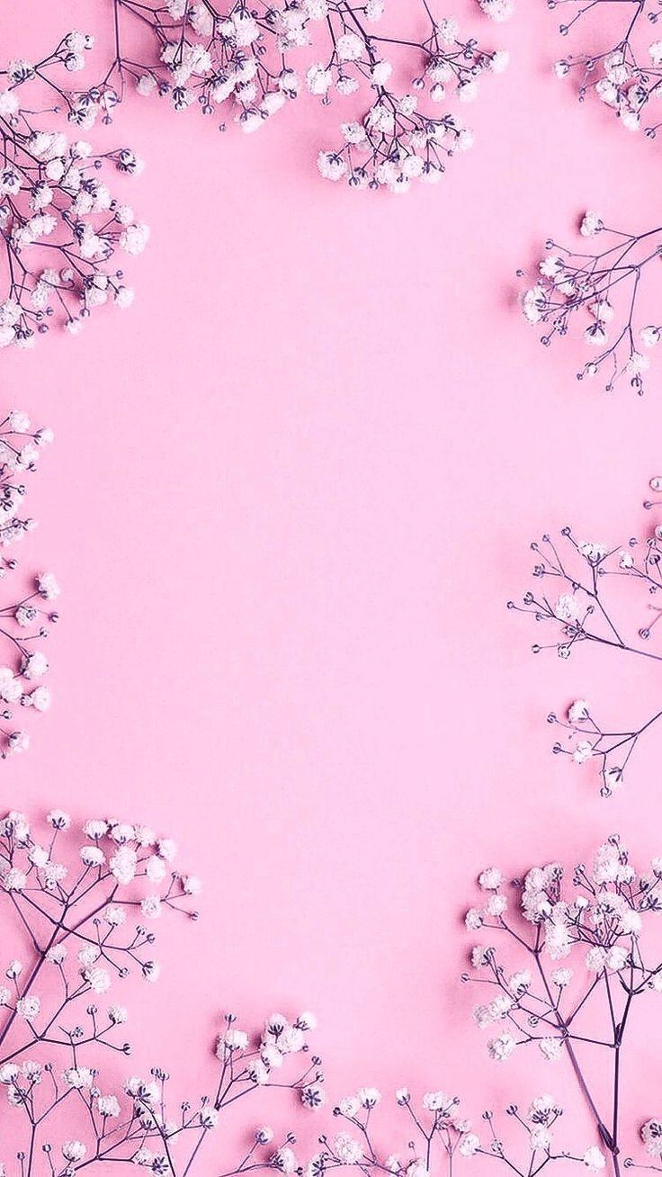 Rosa Blumentapete Blumentapete Flower Background Wallpaper Pink Flowers Wallpaper Pink Wallpaper Backgrounds Flower wallpaper pink background