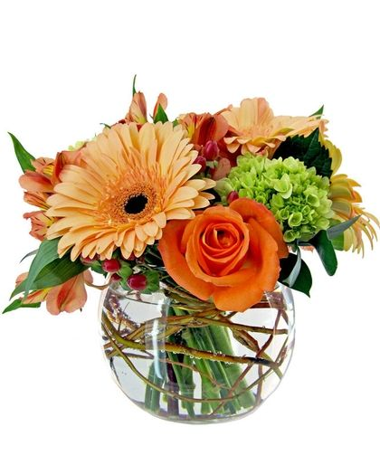 Dreamsicle Make Someone S Day With This Arrangement In A Bubble Bowl It S The Perfect Size For Someone Same Day Flower Delivery Flower Delivery Summer Flowers
