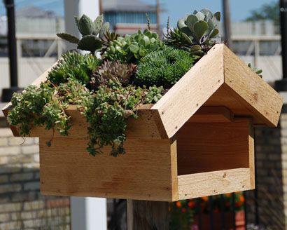 Photo of Green Roof Bird Feeder