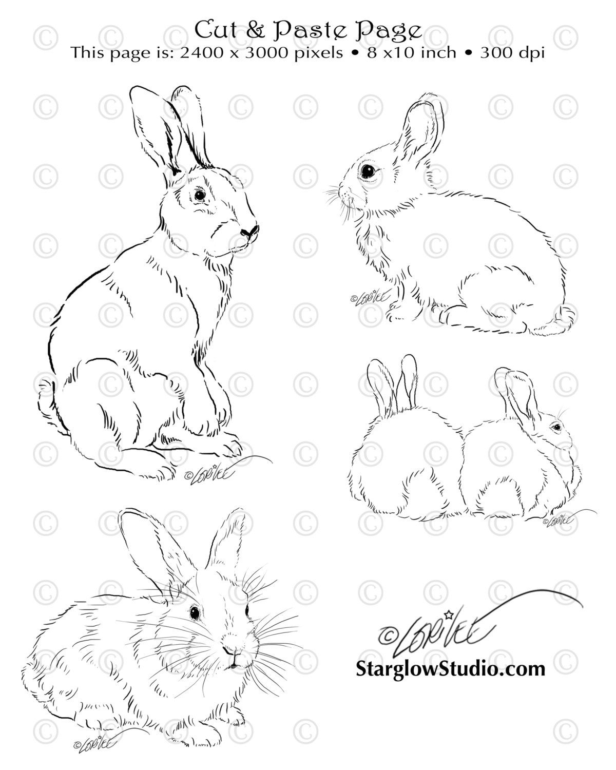 4 Bunny Rabbit Drawings | Clip Art Sketches | Digital Stamp or ...