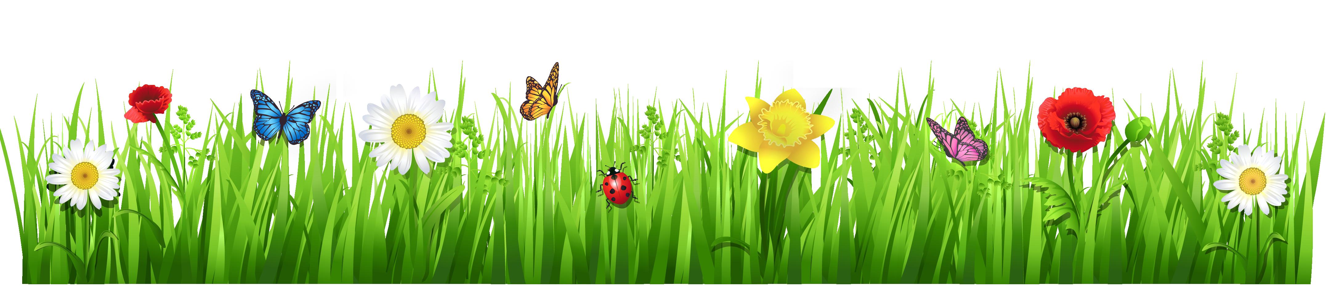 grass clip art 10966 [ 4335 x 972 Pixel ]